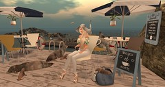 terrace with a view (nicandralaval1) Tags: salacity tlc tarte chimia decorate decor illuminateevent cosmopolitansalesroom wellmade fashion secondlife secondlifefashion gift freebie rezology hair exxess nutmeg animals sealioncolony ison amacci monthlymidnightmadness hive maitreya lelutka laq mosquitosway beach sea spidersdesign