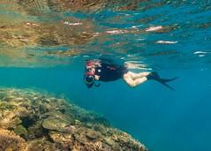 Marcia Snorkeling Heron Island-4 (Quick Shot Photos) Tags: australia canon canoncollective greatbarrierreef heronisland queensland underwater bogie au
