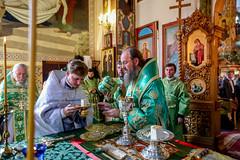 2018.05.28 liturgiya v den' Svyatogo dukha v Brovarakh (10)