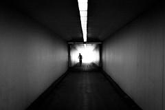 Tunnel (marikoen) Tags: antwerpen vlaanderen belgium be