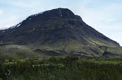 Vert/green (bd168) Tags: volcan volcano grass arbres trees landscape em10markii m14150mmf4056iied islande iceland