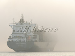 Alf Ribeiro 0253-90 (Alf Ribeiro) Tags: alfribeiro brazil brazilian saopaulo water work arriving boat business cargo channel commerce commercial container delivery dock docked equipment export fog freight harbor heavy industrial industry international landscape loading logistics marine maritime nature nautical ocean port sails santos sea season ship shipment shipping sky trade transport transportation travel tropical vessel view white