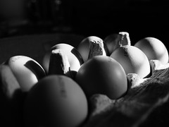 Eggs (riffraff515) Tags: blackwhite shadows box eggs 17mm omd olympus