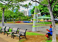 Happy Bench Monday! (+1) (peggyhr) Tags: peggyhr benches netmaking fisherman fishingnet outriggers colourful trees hbm dsc06911abx hawaii thegalaxy thegalaxystars thegalaxylevel2 thegalaxystarshalloffame