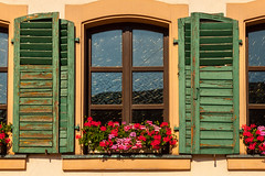 With Patina - HWW! (suzanne~) Tags: window shutter flower geranium germany bavaria