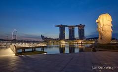 Singapore (Rolandito.) Tags: asia singapur singapore merlion marina bay blue hour dawn morning sunrise