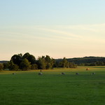 Hay fields at dusk thumbnail