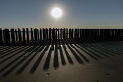 Breskens beach shadows (Dannis van der Heiden) Tags: beach pole sun sundown sea westerschelde stone pier sky dusk nature zeeuwsvlaanderen nikond750 tamron2470mmf28 netherlands breskens