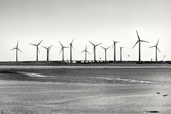 Skyline (wimkappers) Tags: blackwhitephotos bnw bw monochrome skyline dramatic windmills scenery