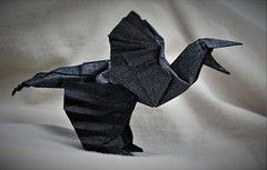 Origami Microraptor Gui (Tankoda) Tags: travis nolan tankoda origami paper art dinosaur mesozoic microraptor gui aptian early cretaceous nicholas terry tissue foil black tan 225 degree design micro raptor wings flight glide