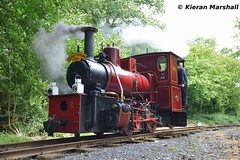 LM44 at Stradbally, 17/6/18 (hurricanemk1c) Tags: railways railway train trains ireland industrialrailway narrowgauge stradbally stradballywoodlandsrailway 2018 lm44 bórdnamóna irishturfboard steamloco andrewbarclay clonsatworks