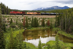 CP 9644 ~ Lake Louise (Chris City) Tags: train railway railroad mainline freight westbound cpr uprr lakelouise alberta ac4400cw