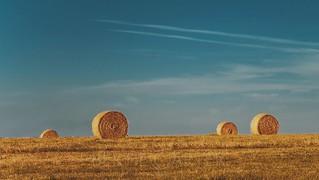 Hay bales in Lewes