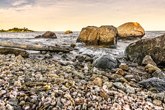 Rocky shore (Alan Charles) Tags: ct connecticutshore hammonassetbeachstatepark hammonassetstateparkmeigspoint meigspoint seascape beach ocean rockyshore sea shore