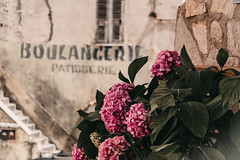 Un bouquet de pains francais, s'il vous plait ... (babs van beieren) Tags: bakery letters wall pink bokeh 7dwf friday floral floralfriday corte corse corsica france