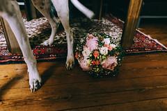 josi's bouquet (Yuliya Bahr) Tags: bouquet bridalbouquet bride wedding flowers curflowers dog pets details carpet red down hund hochzeit brautstrauss haustiere pfingstrosen peony