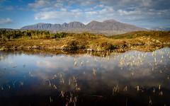 Quinag, seen from Little Assynt (Joe Hayhurst) Tags: 2018 highlands joehayhurst landscape may nikon scotland summer torridon quinag little assynt