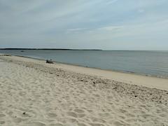barnstable-oregon-beach-2 (MA CZM Coast Guide Online) Tags: barnstable oregonbeach beach czm macoastguide
