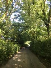 Streets in Devon