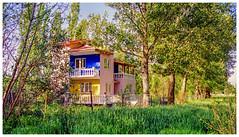 Colors [1400] (my-travels (hurt shoulder not able to comment)) Tags: house colors garden film nikon fe10 nature eskisehir eskişehir keskin turkey tr building architecture
