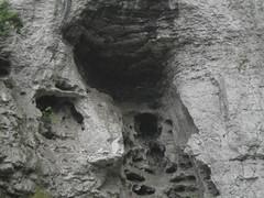Guizhou China cave  开阳光洞 (黔中秘境) Tags: china guizhou asia mountains 中国 贵州 亚洲 山 大自然 cave cavem caves caving cccp speleo 中国洞穴 贵州洞穴 贵阳 洞 山洞 洞穴