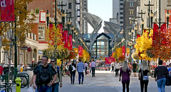 Stephen Avenue Walk. Calgary. (Bernard Spragg) Tags: stephenavenuewalk calgary alberta canada cityscapes urban street avenue lumix autumn seasons fall