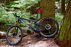 Team-Konstructive-Dream-Bikes-Trail-Trip-Vancouver-2018-SantaCruz-Bike-Tallboy