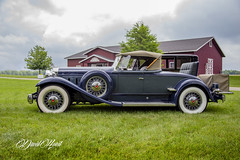 Classy (david.horst.7) Tags: car auto automobile vingage packard