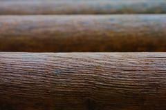 Wooden poles (renelacher) Tags: nikon d3000 abstract wood poles pole holz madera outdoor symmetry nikonphotography nikond3000 kitlens