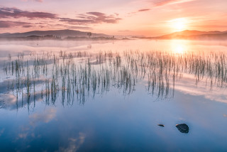 Mist over Rannoch Moor