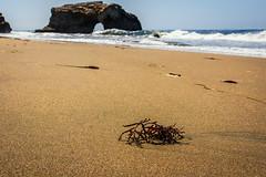 (Abel AP) Tags: beach sand water ocean pacificocean naturalbridgesstatebeach waves landscape coast californiacoast rockformation nature californiabeach santacruz california usa northerncalifornia westcoast abelalcantarphotography