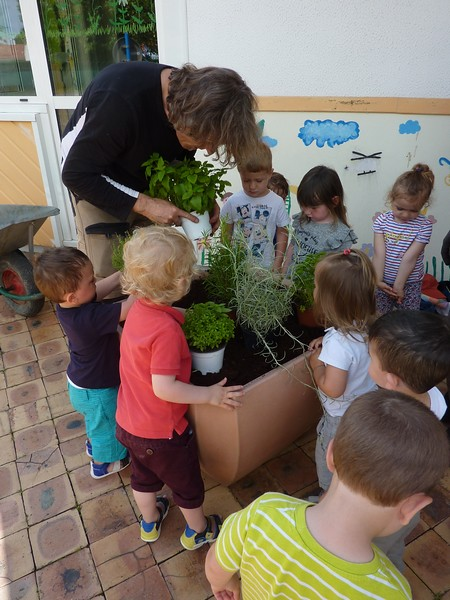 Photo 1 - Activité jardinage au multi-accueil