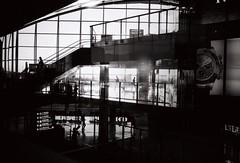(winn s) Tags: 8elements 35mm summicron hongkong leicablackandwhite blackandwhite filmcamera leicafilm leicamp6 leica