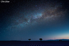 Valensole in the Night (kiar@) Tags: valensole provenza lavanda provence lavande notturno night vialattea milkyway longexposure