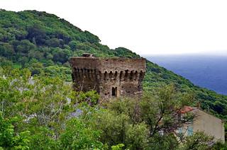 591 - Cap Corse - Pino, Tour Ciocce
