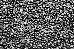 Coffee Beans (BryonLippincott) Tags: coffee puershi yunnansheng china cn yunnan coffeebeans stilllife beans fresh caffine studi mediumroast roasted freshroasted negativespace closeup selectivefocus rustic topdown macro details cup spilled pouring ingredient overheadshot