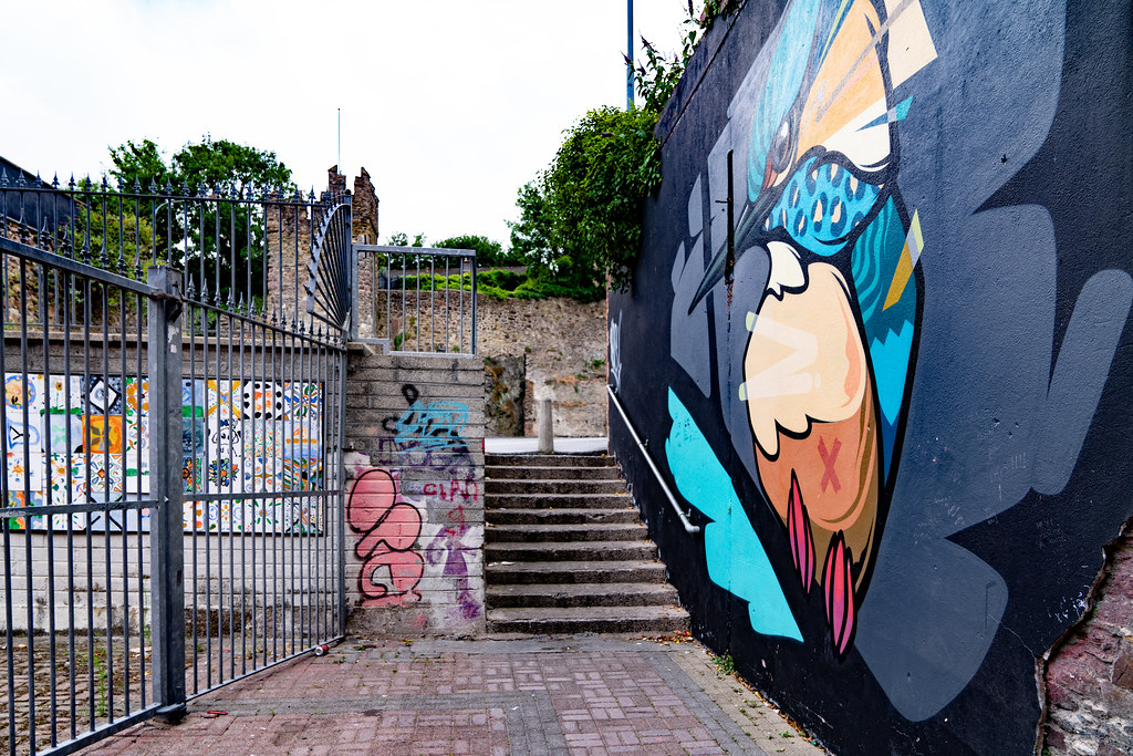 EXAMPLES OF STREET ART [URBAN CULTURE IN WATERFORD CITY]-142308
