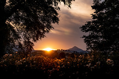 Sunset from Kilcoole, Co Wicklow (johnk0873) Tags: sunset kilcoole wicklow red sugarloaf drummin trees pylons summer thistles seed