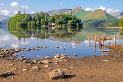 Keswick - Derwent Water (Deirdre Gregg) Tags: lake district summer 2018 lakes cumbria kewsick ambleside windermere ullswater crag castlerigg kirkstone pass grasmere