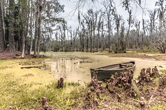 A Boat in the Swamp (-Der Franke-) Tags: canon eos6d eos 6d ef1635f4l ef 1635 f4 l usa united states america vereinigte staaten amerika south carolina charleston magnolia farm swamp sumpf boot boat nature natur bäume trees wasser water