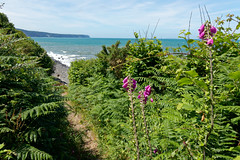 Midsummer's Day (northdevonfocus) Tags: coast seashore seascape northdevoncoast northdevon bidefordbay