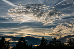 Clouds and Chem Trails (Jenna.Lynn.Photography) Tags: clouds cloud chemtrails sky tree sunset trees silhouettes silhouette landscape skycape landscapephotography canon eos pov weather glow goldenhour