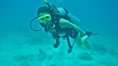 Key Largo Honeymoon (V-rider) Tags: rhm ralph vrider97 jane keylargo floridakeys honeymoon wife love life joy adventure scuba dive pennecamp underwater wet
