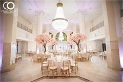 Cherry Blossom Wedding (Southern Exchange Ballrooms) Tags: wedding downtown atlanta recep cherry blossom reception ballroom vintagechandelier