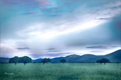 Sunrise in La Raña (Anavicor) Tags: laraña raña cabañeros parquedenacionaldecabañeros ciudadreal castillalamancha lamancha spain españa espagne anavicor anavillar villarana tamron16300mm nikon d5300 spanien amanecer sunrise hora azul bluehour horaazul