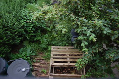 Looking Down on the Front Garden - June 2018 (basswulf) Tags: frontgarden compost compostbin pallets d40 1855mmf3556g lenstagged unmodified 32 image:ratio=32 permissions:licence=c 20180617 201806 3008x2000 lookingdownonthegarden garden normcres oxford england uk