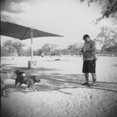 Imperial Reflex with Flash06 (thesnapshotinitiative) Tags: imperial reflex 620 flash six20 1950s film caffenol fomapan 100 contact print ansco panda dog park