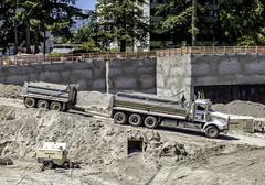 Wheely wagons (Tony Tomlin) Tags: whiterockbc britishcolumbia canada southsurrey peterbilt dumptruck excavation truck