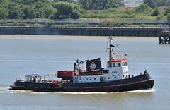 TTMS Viking @ Gallions Reach 30-06-18 (AJBC_1) Tags: riverthames gallionsreach northwoolwich newham londonboroughofnewham eastlondon london england greatbritain unitedkingdom gb uk ship boat vessel nikond3200 ajbc1 ©ajc tug tugboat thamestowagemarineservices imo6611083 mmsi235072883 2chq9 dlrblog