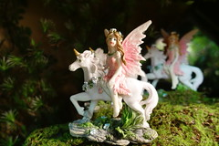 Amana General Store Visit 6-30-18 03 (anothertom) Tags: amanaiowa amanacolonies store amanageneralstore porcelain figurine ridetheuicorn nice cute fairywings 2018 sonyrx100v